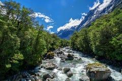 Paesaggio roccioso del fiume in foresta pluviale, Nuova Zelanda immagini stock libere da diritti