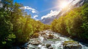Paesaggio roccioso del fiume in foresta pluviale, Nuova Zelanda immagini stock