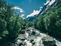 Paesaggio roccioso del fiume in foresta pluviale, Nuova Zelanda fotografia stock libera da diritti