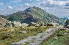 Paesaggio roccioso della traccia di estate Fotografia Stock