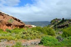 Paesaggio roccioso in Tenerife Fotografia Stock