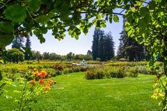 Paesaggio in Rose Garden municipale, San José, California fotografie stock