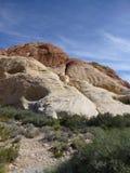 Paesaggio rosso del canyon della roccia Fotografie Stock