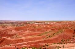 Paesaggio rosso del deserto Fotografia Stock Libera da Diritti