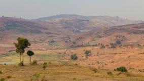 Paesaggio rosso della montagna con cielo blu nel Madagascar Immagini Stock