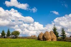 Paesaggio rumeno di estate con i mucchi di fieno Fotografia Stock