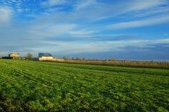 Paesaggio rurale Immagine Stock Libera da Diritti
