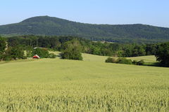 Paesaggio rurale immagini stock libere da diritti