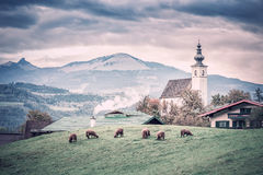 Paesaggio rurale alpino d'annata tradizionale Immagine Stock