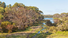 Paesaggio rurale australiano immagine stock
