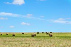 Paesaggio rurale australiano del campo con i mucchi di fieno Immagini Stock Libere da Diritti
