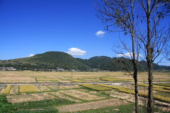 Paesaggio rurale cinese Immagine Stock