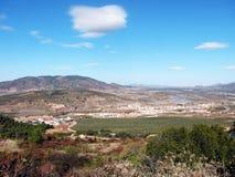 Paesaggio rurale con di olivo Fotografie Stock Libere da Diritti