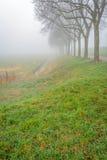 Paesaggio rurale con gli alberi su una mattina nebbiosa Immagine Stock Libera da Diritti