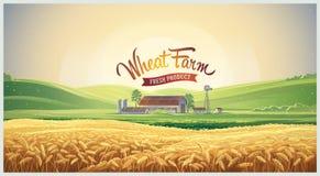 Paesaggio rurale con il giacimento di grano illustrazione di stock
