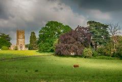 Paesaggio rurale con la chiesa del XII secolo della trinità santa in Wickwar fotografia stock libera da diritti