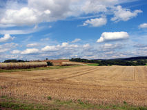 Paesaggio rurale con le balle di fieno 5 fotografie stock