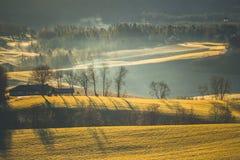Paesaggio rurale con nebbia e la luce di alba immagini stock libere da diritti