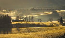 Paesaggio rurale con nebbia e la luce di alba immagini stock