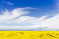 Paesaggio rurale del lago Qinghai - Cina Fotografia Stock