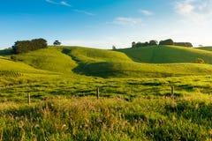 Paesaggio rurale dell'Australia fotografie stock