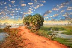 Paesaggio rurale dell'India Immagine Stock