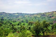 Paesaggio rurale dell'Uganda, Africa Fotografia Stock