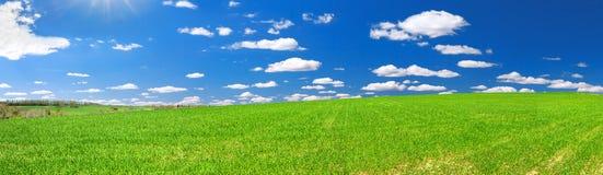 Paesaggio rurale della primavera con il campo ed il cielo blu, un panorama Immagini Stock Libere da Diritti