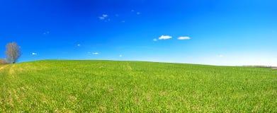 Paesaggio rurale della primavera con il campo ed il cielo blu, un panorama Fotografia Stock