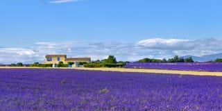Paesaggio rurale della Provenza, Francia fotografia stock