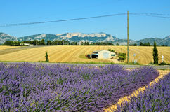 Paesaggio rurale della Provenza, Francia Immagini Stock Libere da Diritti
