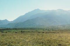 Paesaggio rurale della Romania fotografie stock libere da diritti