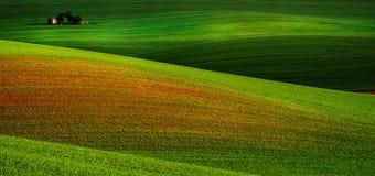 Paesaggio rurale della sorgente fotografia stock