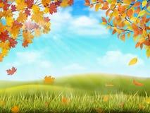 Paesaggio rurale di autunno con i rami di albero Fotografie Stock