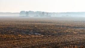 Paesaggio rurale di autunno dell'estratto nella mattina nebbiosa immagini stock libere da diritti
