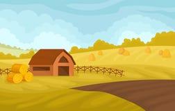 Paesaggio rurale di autunno sereno con il granaio ed i campi gialli, agricoltura e coltivare l'illustrazione di vettore su un bia illustrazione vettoriale