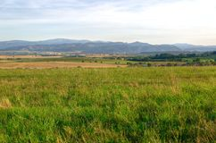 Paesaggio rurale di estate Fotografie Stock Libere da Diritti