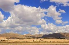 Paesaggio rurale di estate: Alta Murgia National Park Campo collinoso con i campi di mais del raccolto L'Italia, Puglia Immagine Stock Libera da Diritti