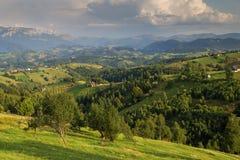 Paesaggio rurale di estate nelle montagne carpatiche Immagini Stock