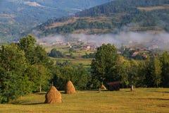 Paesaggio rurale di estate nelle montagne carpatiche, in Moeciu - crusca, la Romania Fotografie Stock