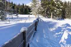 Paesaggio rurale di inverno con il recinto di legno coperto di brina Fotografie Stock