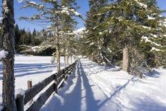 Paesaggio rurale di inverno con il recinto di legno coperto di brina Fotografie Stock Libere da Diritti