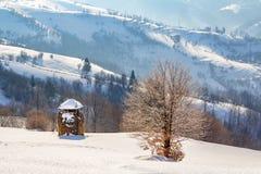 Paesaggio rurale di inverno, mucchio di fieno ed albero solo sul backgr fotografia stock