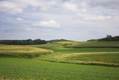 Paesaggio rurale di Midwest Immagine Stock