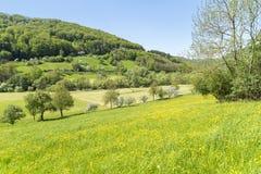 Paesaggio rurale di primavera Fotografia Stock Libera da Diritti