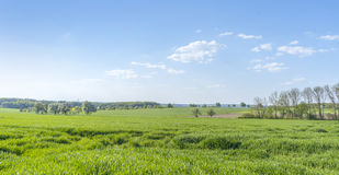 Paesaggio rurale di primavera Immagini Stock