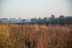 Paesaggio rurale di primo mattino con nebbia Immagini Stock Libere da Diritti