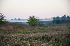 Paesaggio rurale di primo mattino con nebbia Fotografia Stock