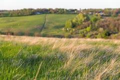 Paesaggio rurale di tramonto del pascolo di estate in Ucraina centrale Fotografie Stock