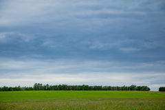 Paesaggio rurale estone Immagine Stock